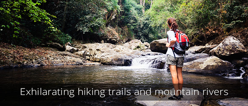 Exhilarating Hiking Trails and Mountain Streams