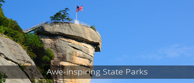 Awe-inspiring Forests and State Parks