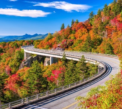 fall colors of Asheville on the Blue Ridge Parkway | Asheville Connections