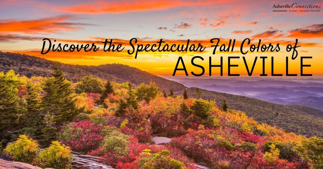 Discover the Spectacular Fall Colors of Asheville | Asheville Connections