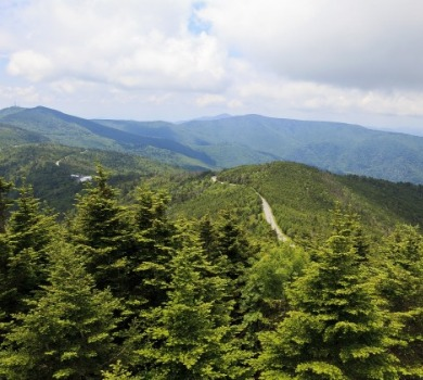 Mount Mitchell | Asheville Connections