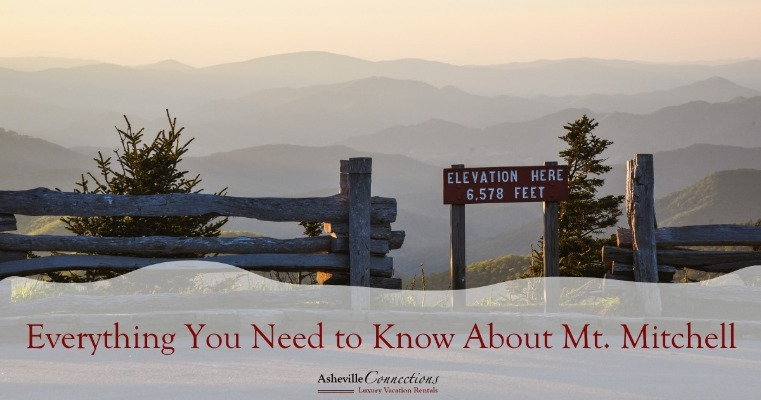 Everything You Need to Know About Mt. Mitchell | Asheville Connections