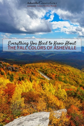 Everything You Need to Know About the Fall Colors of Asheville | Asheville Connections