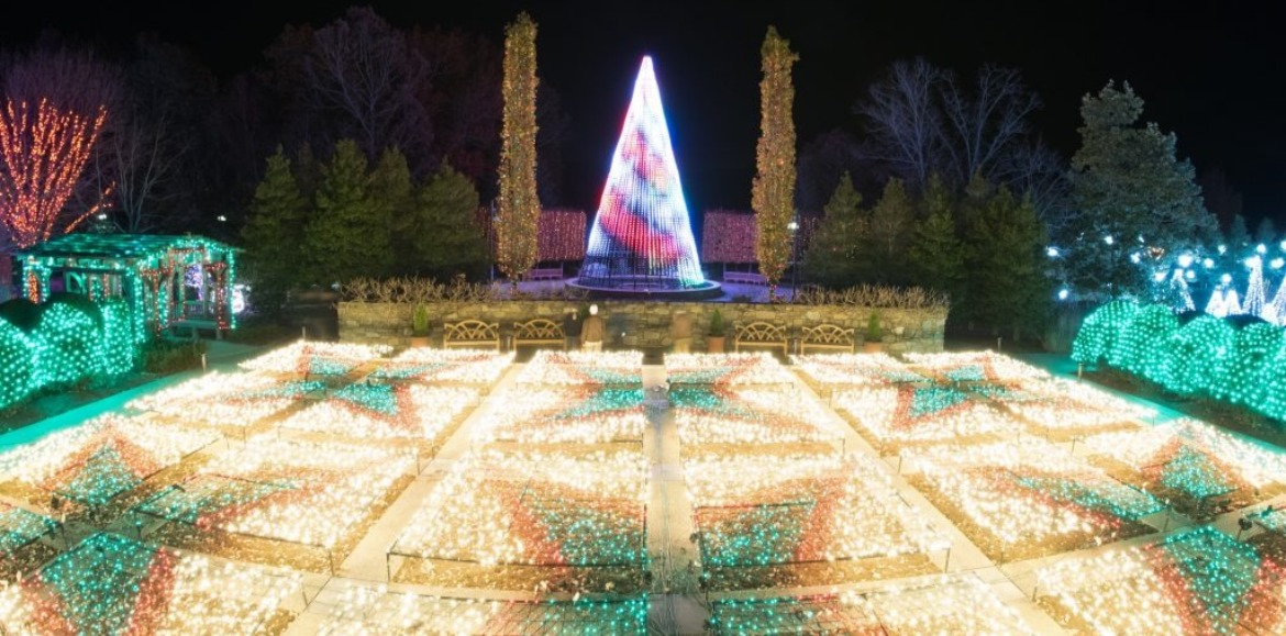The North Carolina Arboretum Winter Lights  | Asheville Connections