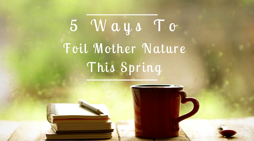 Spring activities for a rainy day in Asheville!
