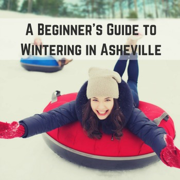 Beginners Guide to Wintering in Asheville social sharing image