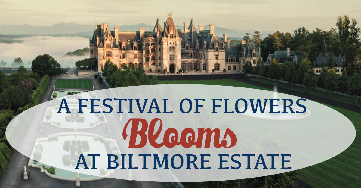 A Festival of Flowers Blooms at Biltmore Estate