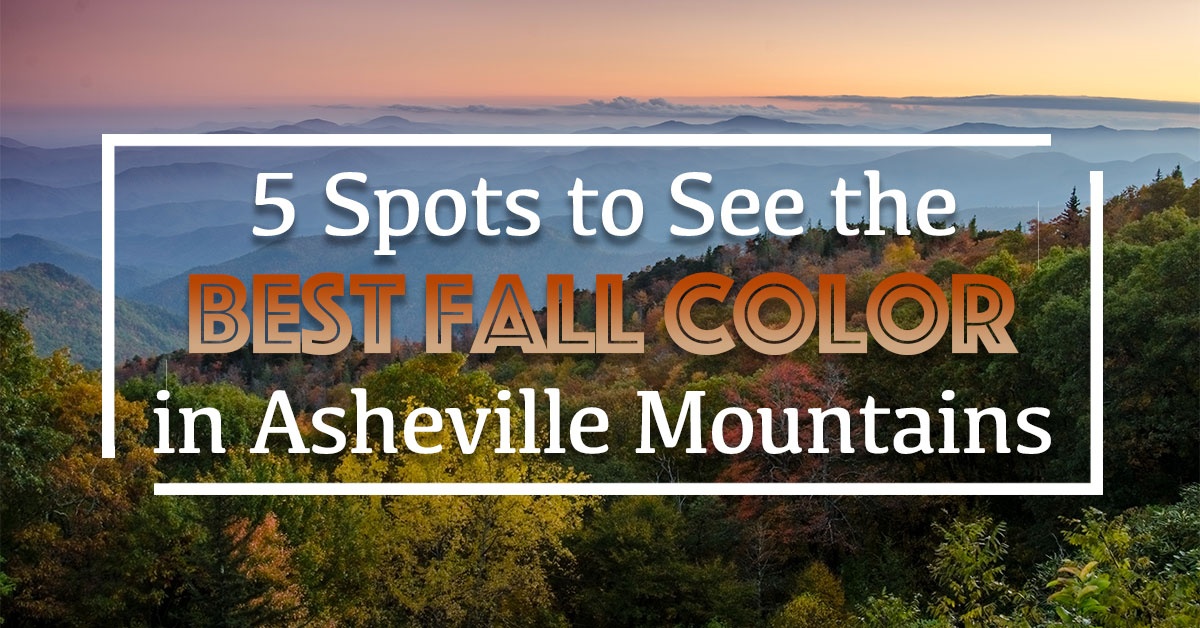 5 Spots To See the Best Fall Color in Asheville's Mountains