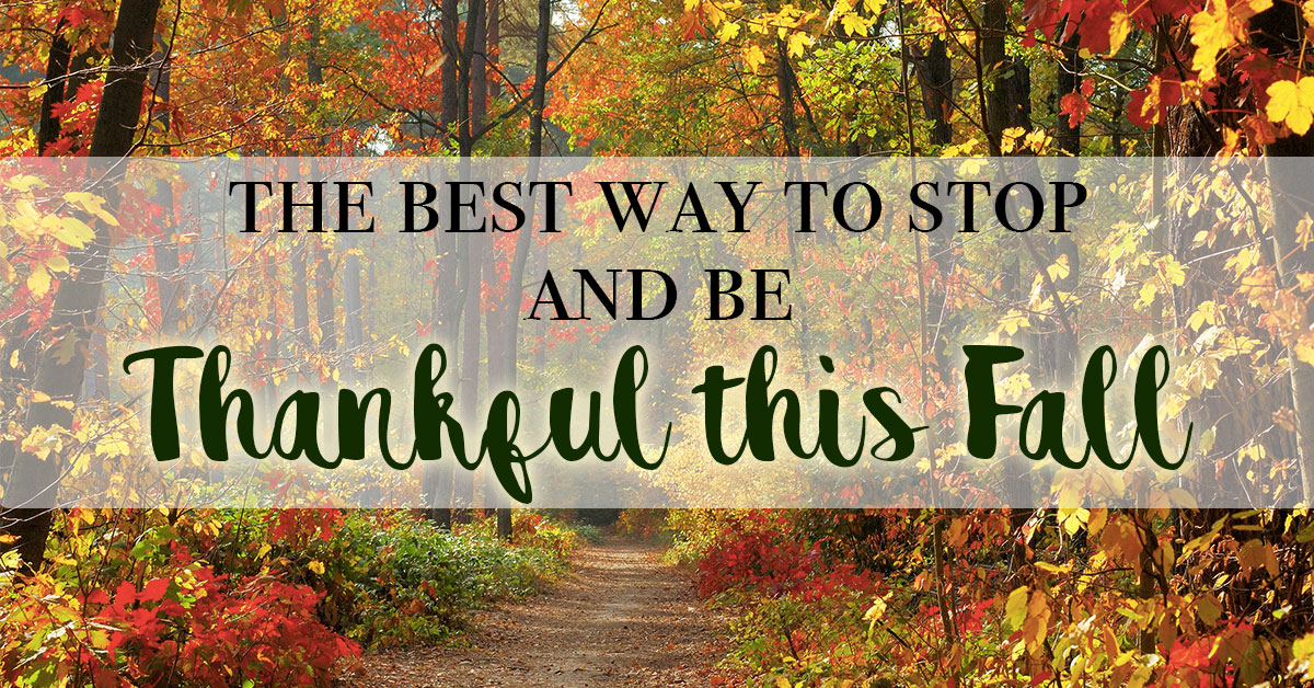 The Best Way to Stop and Be Thankful this Fall