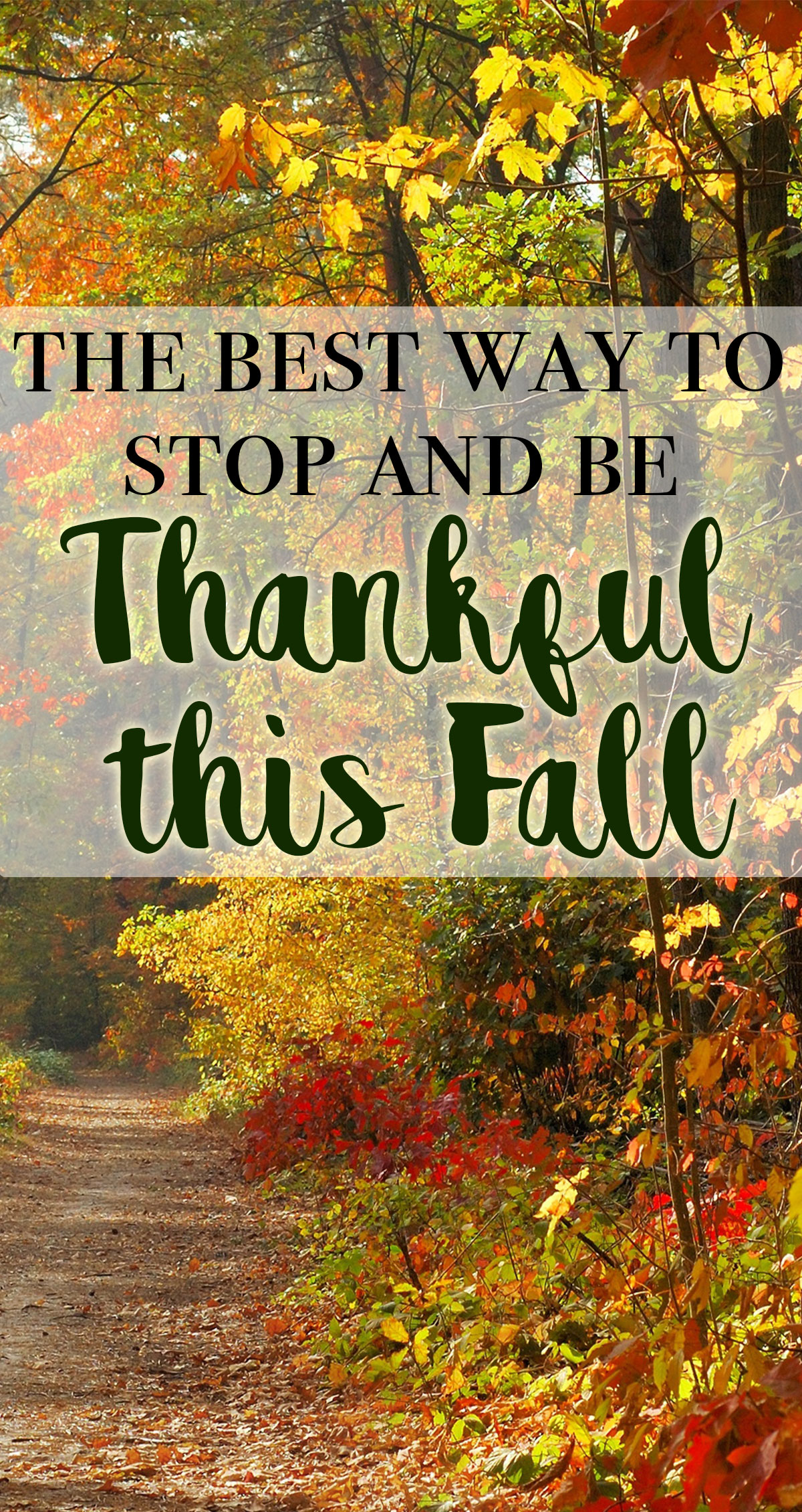 The Best Way to Stop and Be Thankful this Fall Pin