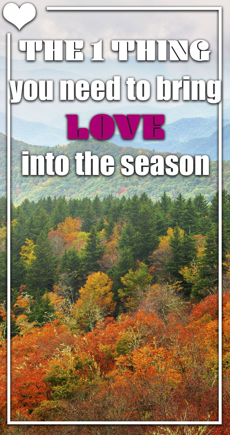 Bring Love Into the Season Pin