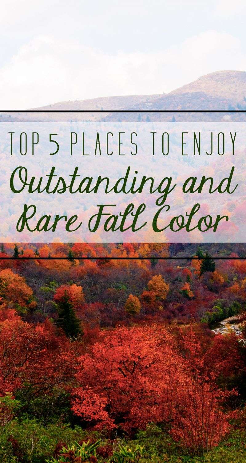 Top 5 Places to Enjoy Outstanding and Rare Fall Color Pin