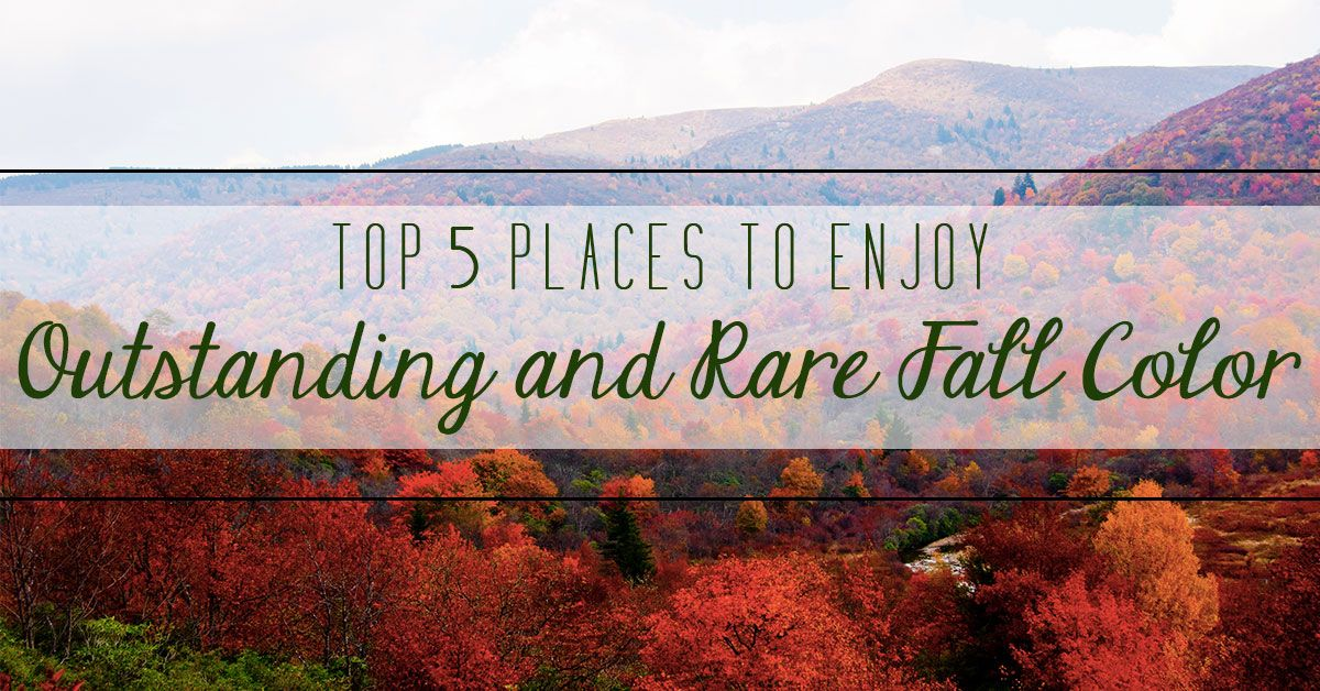 Top 5 Places to Enjoy Outstanding and Rare Fall Color