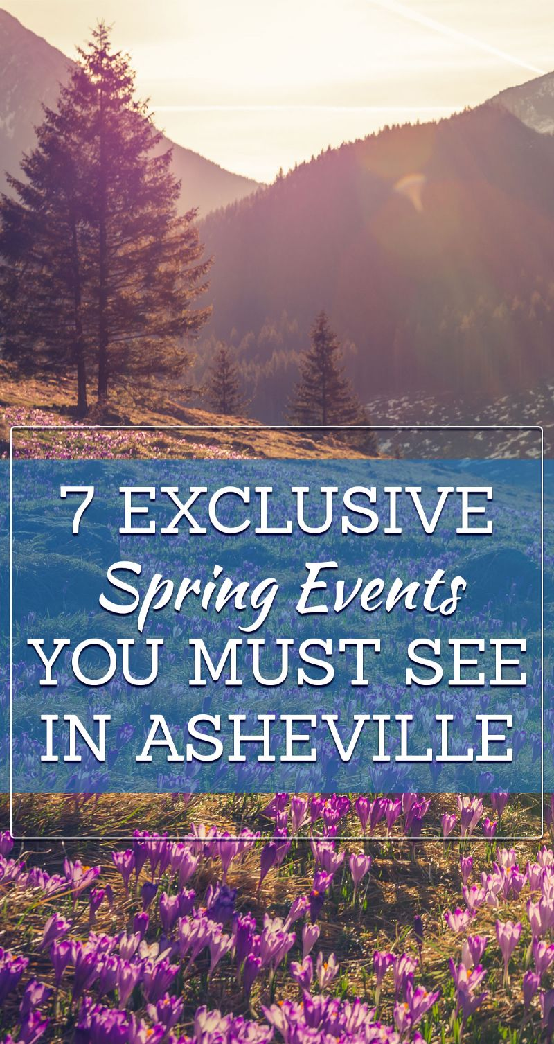 Spring Events in Asheville Pin