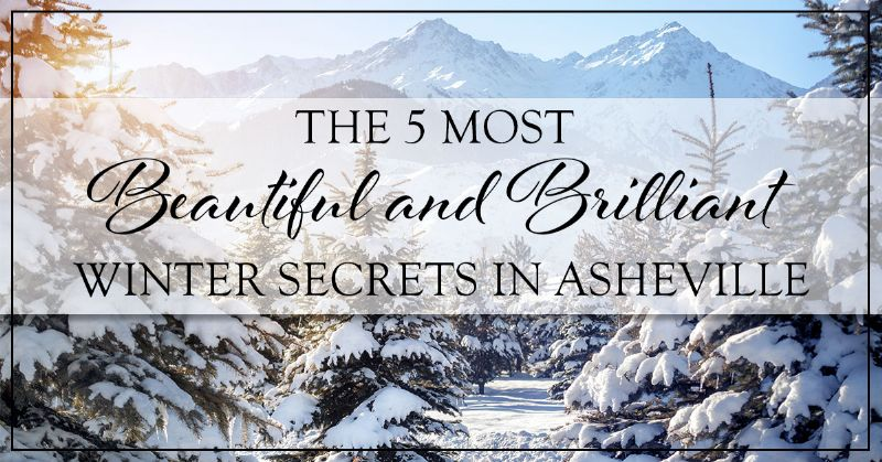 Winter Secrets in Asheville