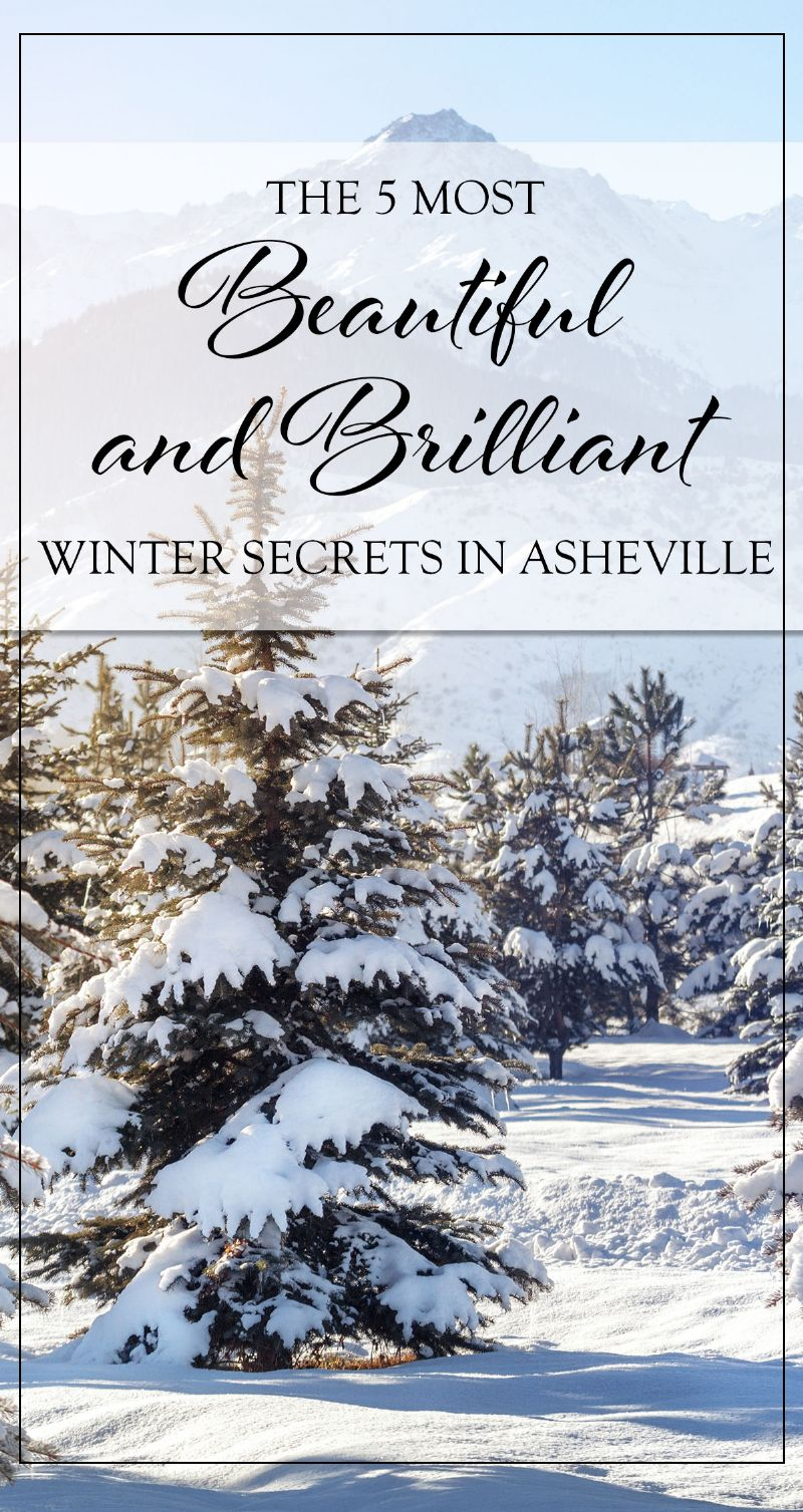 Winter Secrets in Asheville Pin