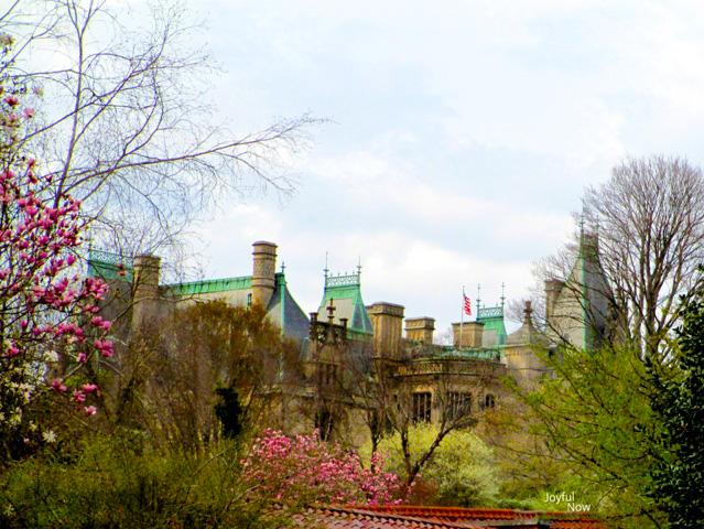 Biltmore Estate by Joyful Now Photography
